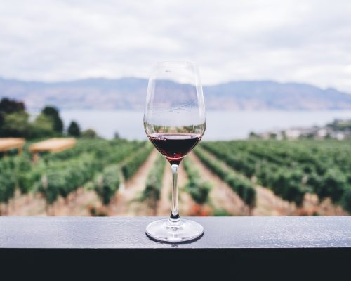 Curso de Enoturismo e Wine Marketing